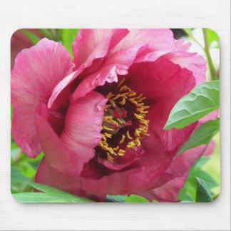 Tapis De Souris Pivoine rouge florale