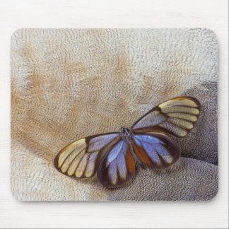 Tapis De Souris plume égyptienne d'oie de papillon de Verre-aile