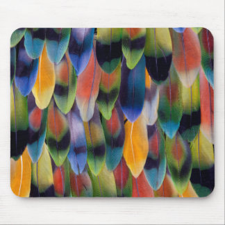 Tapis De Souris Plumes colorées de perroquet de perruche