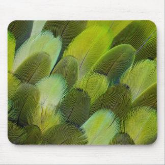 Tapis De Souris Plumes vertes de perroquet d'Amazone