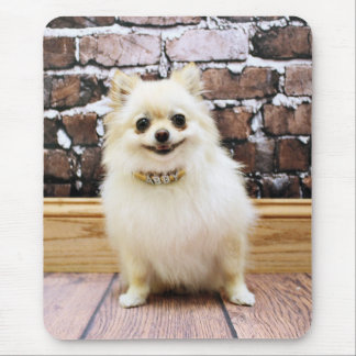 Tapis De Souris Pomeranian - collier de vanité d'Abby
