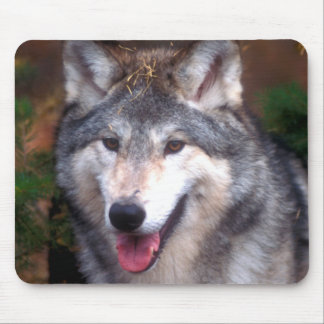 Tapis De Souris Portrait d'un loup gris