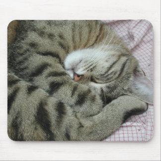 Tapis De Souris Position maladroite de sommeil de chat