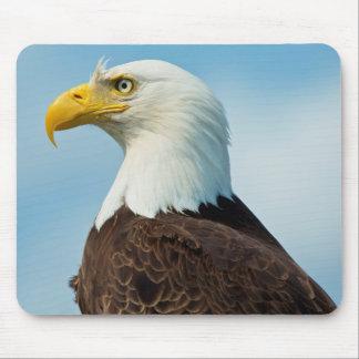 Tapis De Souris Profil d'Eagle chauve