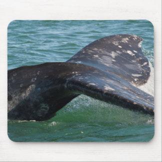 Tapis De Souris Queue de baleine grise