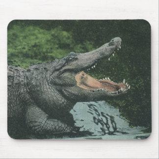 Tapis De Souris Reptiles vintages de crocodile, faune marine