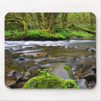 Tapis De Souris Rivière dans la forêt verte, Orégon