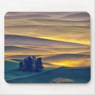 Tapis De Souris Rolling Hills de blé au lever de soleil | WA