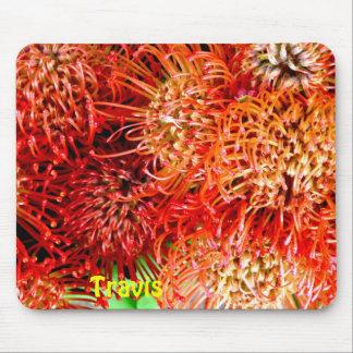 Tapis De Souris ~ saisissant de Banksia personnalisé par ~ de