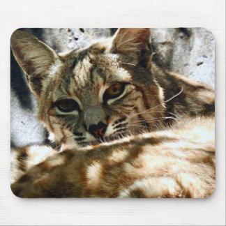 Tapis De Souris Série animale de Mousepad - chat sauvage