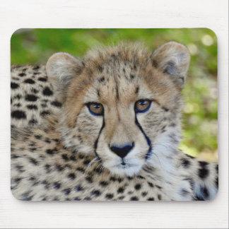 Tapis De Souris Série animale de Mousepad - guépard de bébé