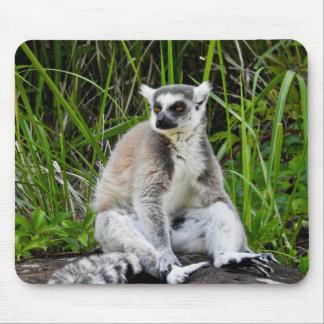 Tapis De Souris Série animale de Mousepad - lémur Anneau-Coupé la