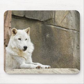 Tapis De Souris Série animale de Mousepad - loup blanc