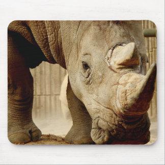 Tapis De Souris Série animale de Mousepad - rhinocéros