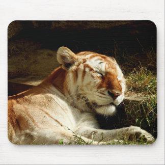 Tapis De Souris Série animale de Mousepad - tigre de sommeil