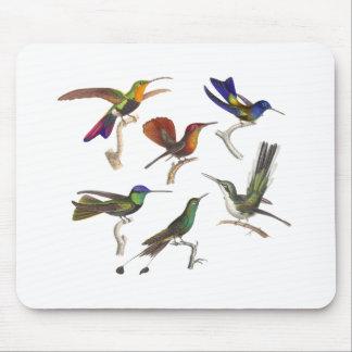 Tapis De Souris Six colibris colorés