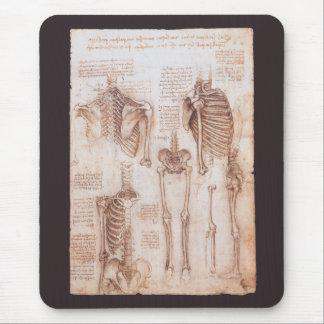 Tapis De Souris Squelettes humains d'anatomie par Leonardo da