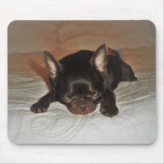 Tapis De Souris tapis photo floue chiot chihuahua marron couché