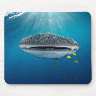 Tapis De Souris Tête d'un requin de baleine