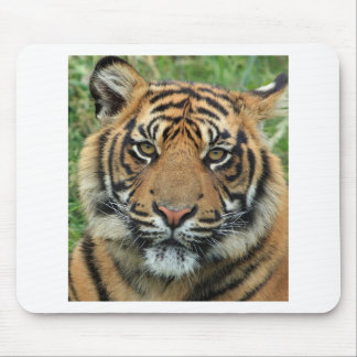 Tapis De Souris Tigre adulte