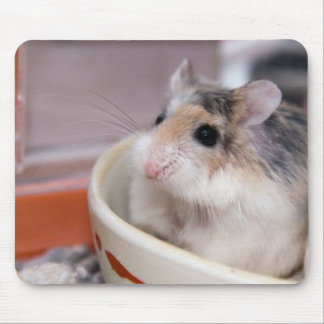 Tapis De Souris Tofu le hamster