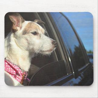 Tapis De Souris Tour de Jack Russell Terrier à la plage Mousepad