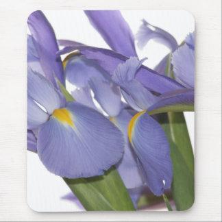 Tapis De Souris Tous les yeux sur le mousepad d'iris
