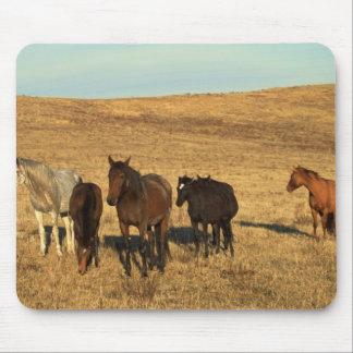Tapis De Souris Troupeau de cheval dans l'ouest