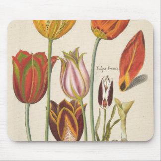 Tapis De Souris Tulipes
