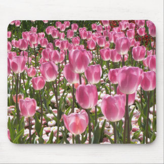 Tapis De Souris Tulipes de Canberra
