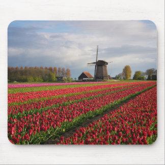 Tapis De Souris Tulipes rouges et un moulin à vent