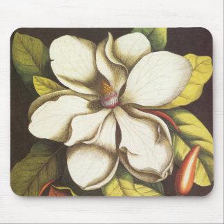 Tapis De Souris Usine vintage de fleurs de magnolia avec des