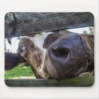 Tapis De Souris Vache curieuse