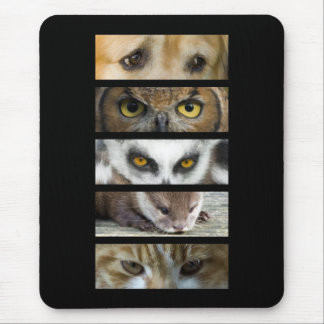 Tapis de souris - yeux d'animaux