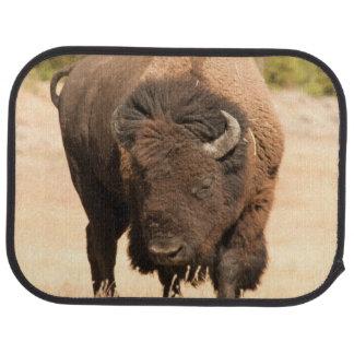 Tapis De Voiture Bison