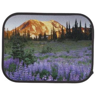 Tapis De Voiture Coucher du soleil au-dessus de Mt. Adams et un pré