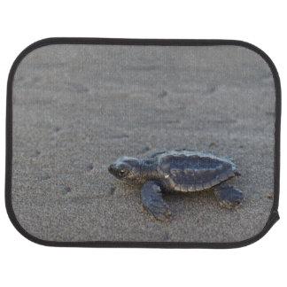 Tapis De Voiture Hatchlings de tortue