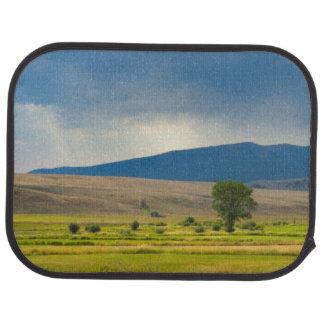 Tapis De Voiture Le comté de Granite Montana