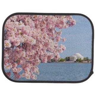 Tapis De Voiture Les Etats-Unis, Washington DC, cerisier
