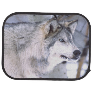 Tapis De Voiture Lupus de loup, de Canis de bois de construction,