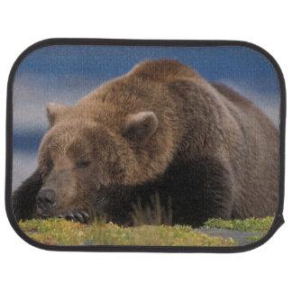 Tapis De Voiture Ours de Brown, ours gris, prenant un petit somme,