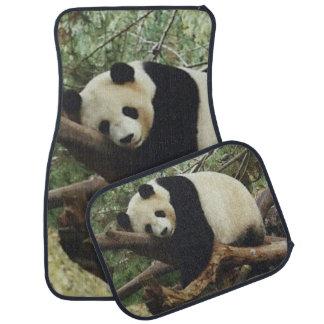 Tapis De Voiture Ours panda