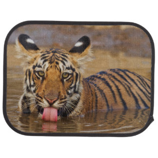 Tapis De Voiture Petit animal de tigre royal de Bengale, eau