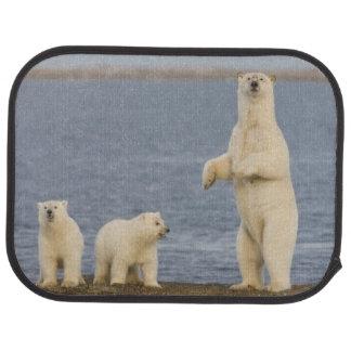 Tapis De Voiture Petits animaux d'ours blanc et leur mère