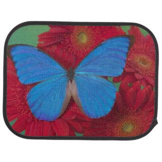 Tapis De Voiture Photographie de Sammamish Washington du papillon