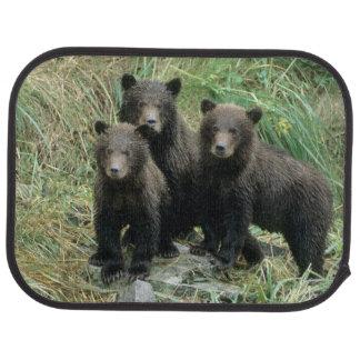 Tapis De Voiture Trois ours gris CUB ou Coys (CUB de