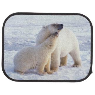 Tapis De Voiture Truie d'ours blanc avec l'petit animal, banquise