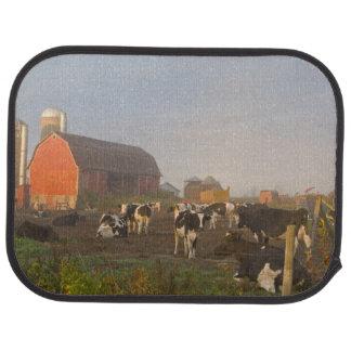 Tapis De Voiture Vaches laitières du Holstein en dehors d'une