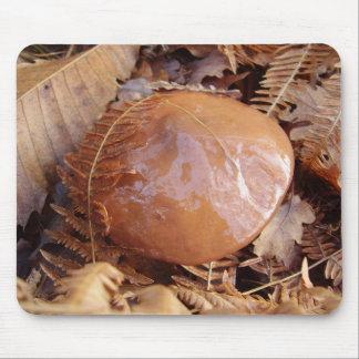 Tapis glissant de souris de champignon de Jack Tapis De Souris