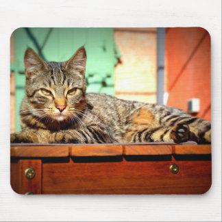 Tapis souris chat tigré sur une table de jardin tapis de souris